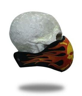 facemask_skull_of_fl_1