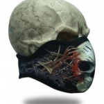 facemask_wired_skull_1